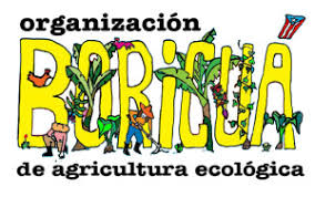 org boricua_v2_logo